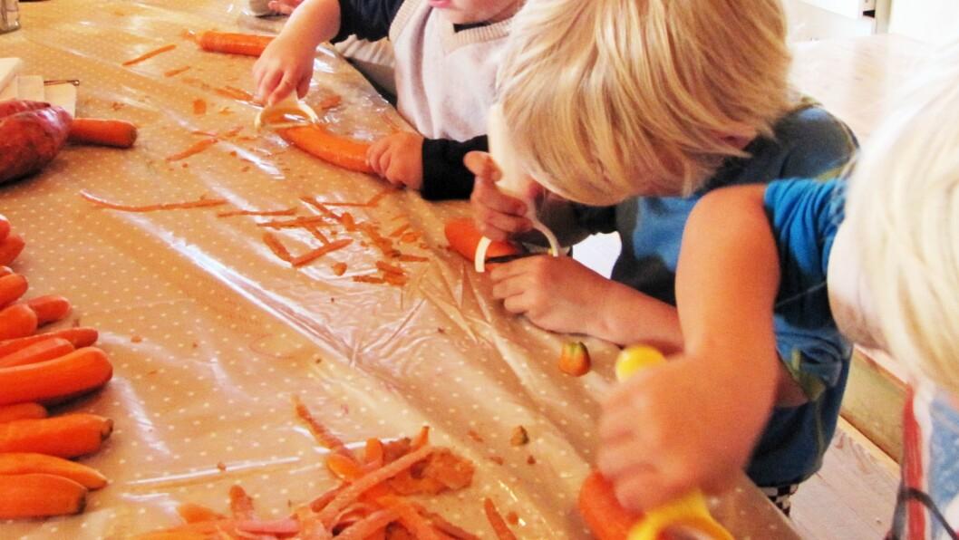 Det er store forskjeller i mattilbudet i norske barnehager. Bildet er hentet fra Soria Moria steinerbarnehage som har fokus på økologisk og vegetarisk mat laget fra bunn av, og som barna er med på å tilberede.