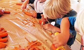 Ny undersøkelse: Mange foreldre misfornøyde med maten i barnehagen