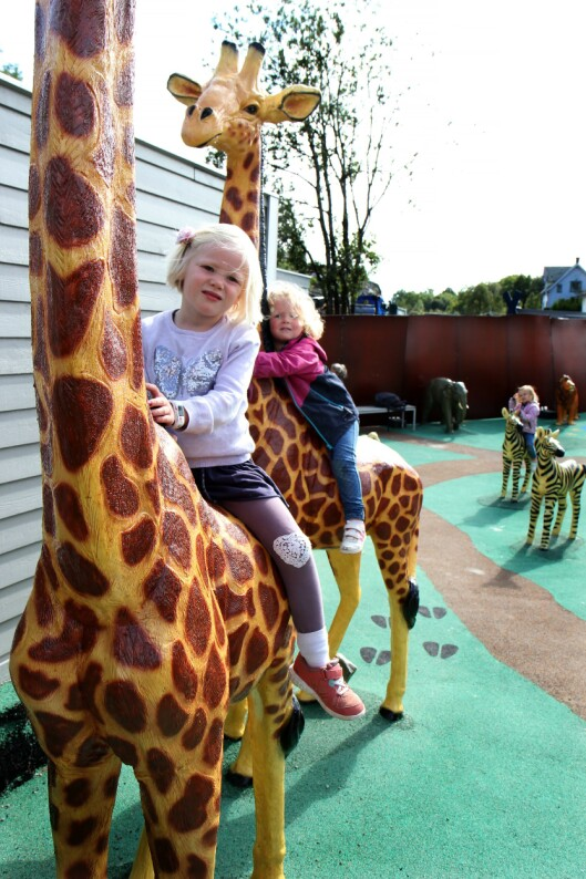 Elisabeth og Sara tar seg en liten ridetur på hver sin sjiraff.