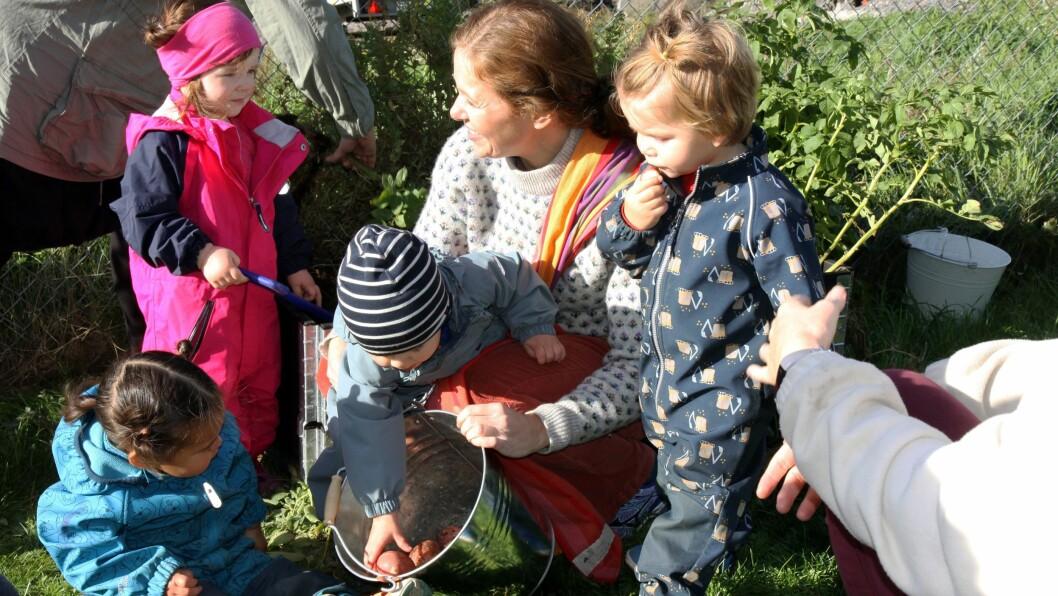 – Vi er selvforsynt med poteter, jordskokk og urter i deler av året. Og de potetene vi dyrker selv er jo selvfølgelig ekstra gode, sier pedagogisk leder Ada Stuge Evjen i Teisen Vest barnehage.