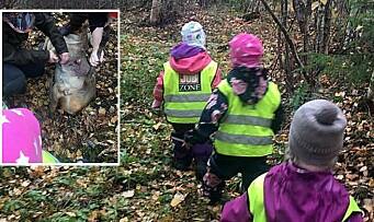 Tar barna med på jakt: – En naturlig del av friluftslivet i området vi holder til
