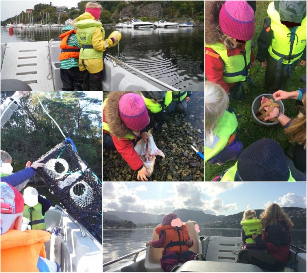 Bildene viser noe av aktivitetene som barna i Åsane gårds- og friluftsbarnehage var med på før de ble tvunget til å sette båten på land. Foto: Privat