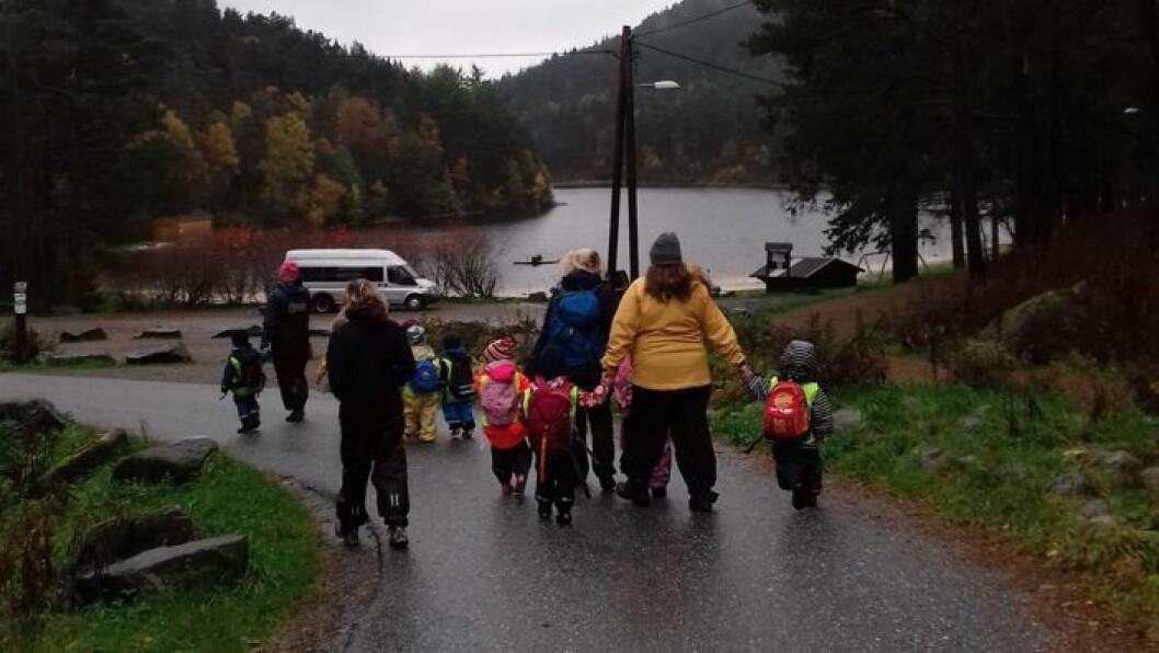 De spanske barnehagelærerne var blant annet med barn ut på tur. - De ble imponert over norske barns motorikk og tilnærming til naturen, sier områdeleder Hilde Ersvær i Akasia Barnehage. Foto: Akasia