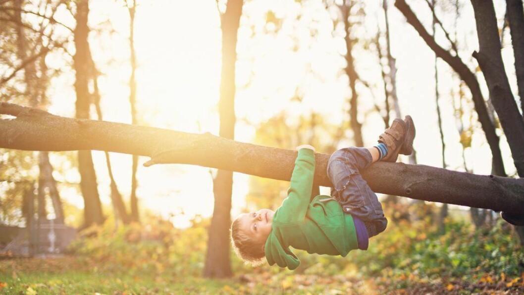 «Barn trenger å få leke. Barn trenger å få være barn,» skriver Geir Iden.