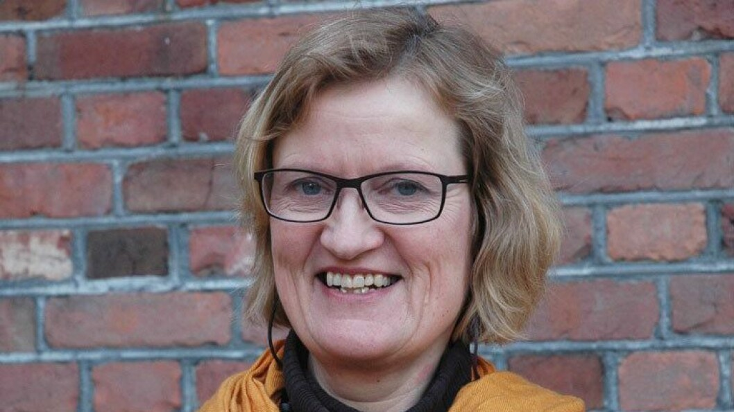 Anne Greve er barnehagelærer og professor i barnehagepedagogikk ved OsloMet.