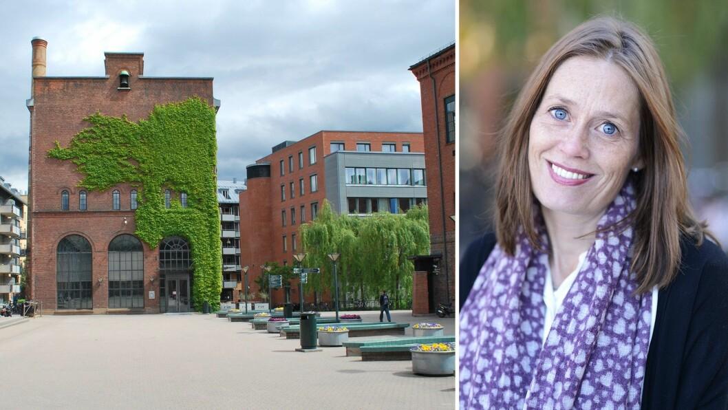 Elisabeth Bjørnestad var prosjektleder for GoBaN-prosjektet og vil også lede GoBaNs skoleprosjekt – Be ProS (Better provision for Norway's children from early childhood education and care through primary school).