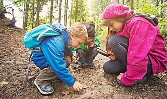 Barnehagedagen 2019: – Barna lærer om verden rundt seg ved å være nysgjerrige, spørre og undre seg