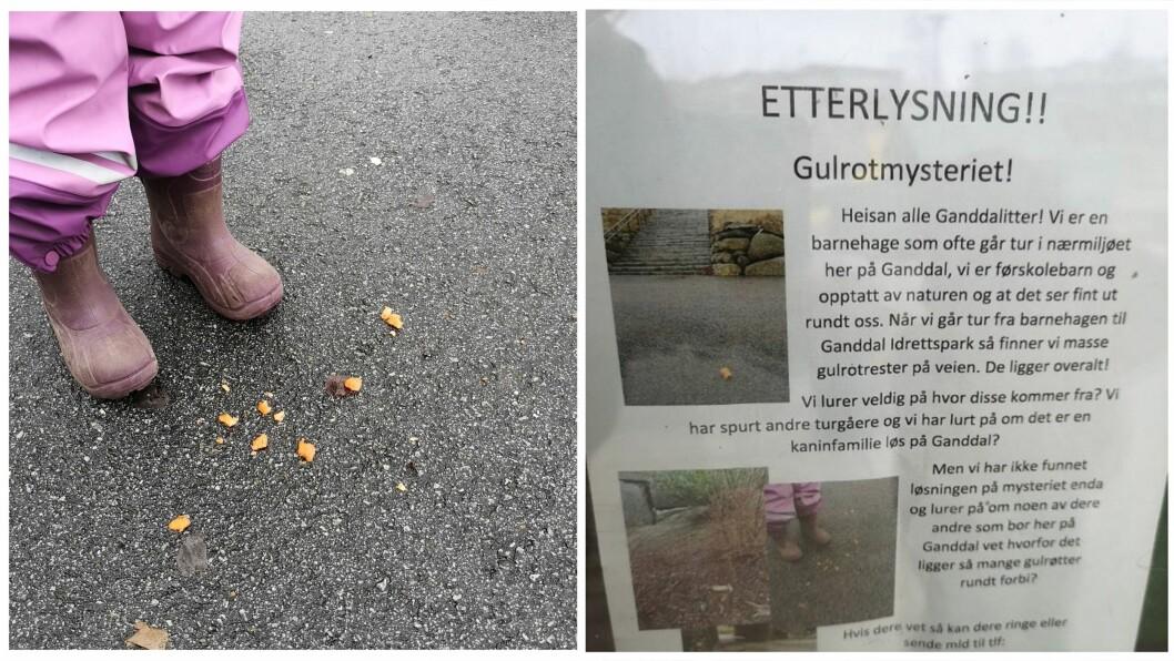– Barna har hatt det utrolig gøy med å etterforske gulrotmysteriet når de har vært på tur, sier daglig leder Margrethe Håland i Lundehagen FUS barnehage.
