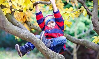 – Nordiske barn kan gjøre ting amerikanske barn ikke får lov til å gjøre