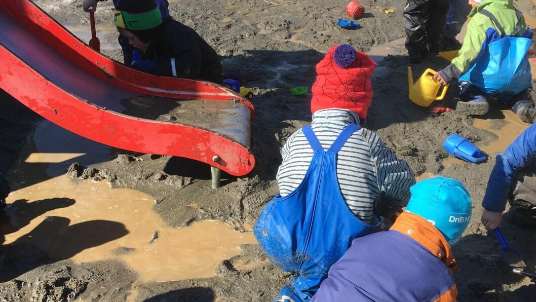 Denne uken var 24 styrere fra Estland på besøk i flere barnehager i Norge, blant annet for å se hvordan norske barnehager bruker utetiden.