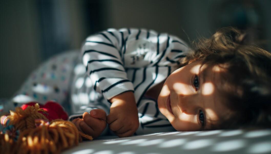 «Søvn er helt avgjørende for at vi skal fungere.»