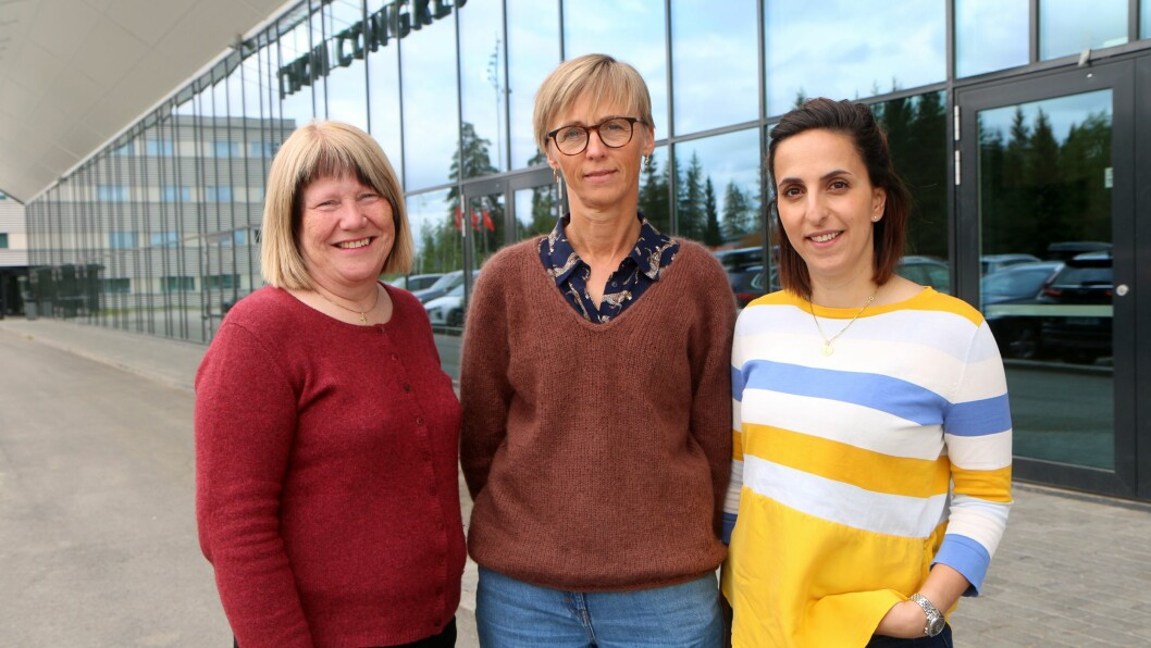Fra venstre: Styrer Unni Sirevåg Lende i Espira Ormedalen barnehage, styrer Heidi Davidsen i Espira Åbol barnehage og styrer Kathy Dayvary Larsen i Espira Torshovdalen barnehage.