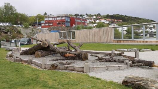 – Den store treroten vi har her ute kan for eksempel være en jungel, en brannbil eller en sjørøverskute, alt det barna vil at den skal være. Og barna bruker den på mange ulike måter, sider daglig leder i barnehagen, Jorunn N. Bøe.