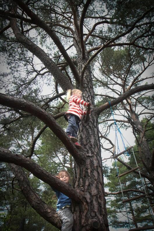 I barnehagen får barna boltre seg både høyt og lavt. Her er Ayleén Elvira Høvik og Angelica Ramsdal på vei opp i treet.