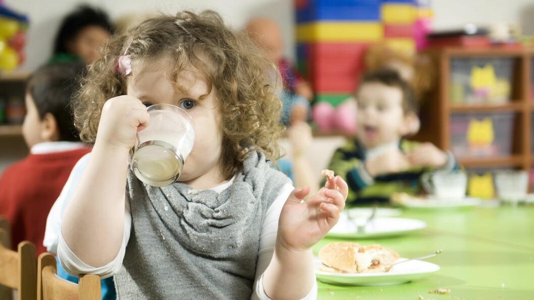 Mange barn spiser flere måltider i barnehagen enn hjemme og kostholdet i de første årene legger grunnlaget for helsen resten av livet, skriver artikkelforfatteren.