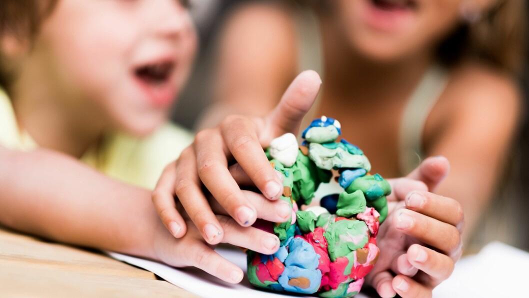 Lederne organiserer nærmere 800 daglige ledere og pedagogiske ledere i både private og offentlige barnehager.