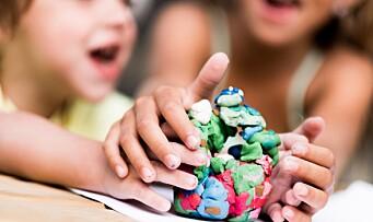 Lederne: – Mangfoldig barnehagetilbud er det viktigste