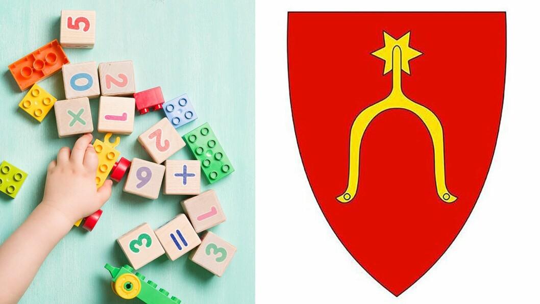1. januar 2020 slås Moss og Rygge sammen til nye Moss kommune. Mye vil sikkert bli bra i den nye kommunen, men tro ikke at sammenslåingen sikrer barnehagebarna et like godt tilbud på hver sin side av de gamle kommunegrensene, skriver Royne Berget.