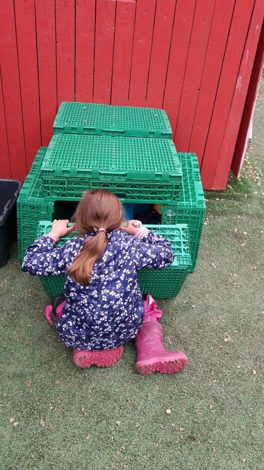 – De grønne grønnsakskassene vi har i barnehagen er veldig populære. Barna bruker dem til alt mulig, forteller styreren.