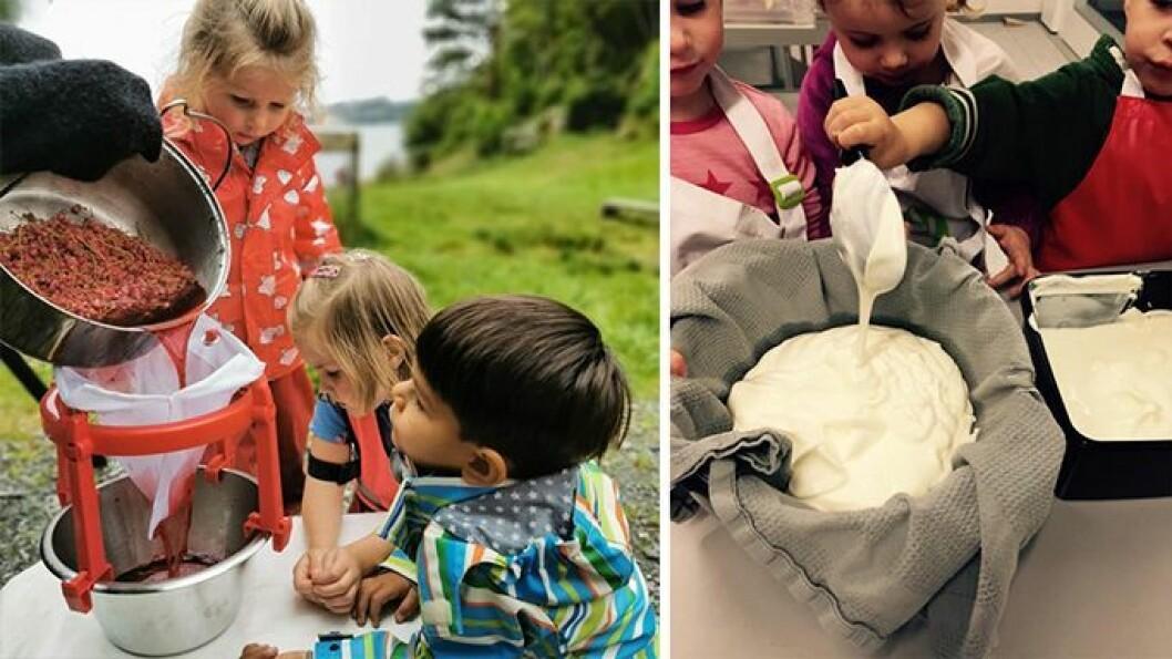 Saft lages av rips barna har plukket, og osterester blir til kremost.