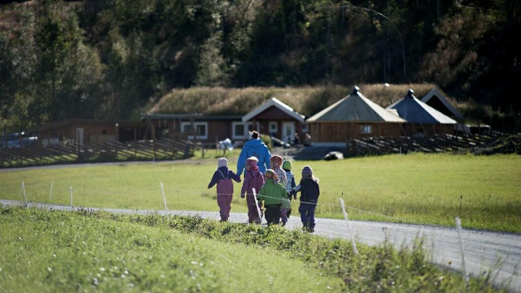 Bukkspranget gårds- og naturbarnehage i Stjørdal fikk ekstra tilskudd til bemanningsnorm i år, men eieren frykter at det ikke vil skje i 2020.