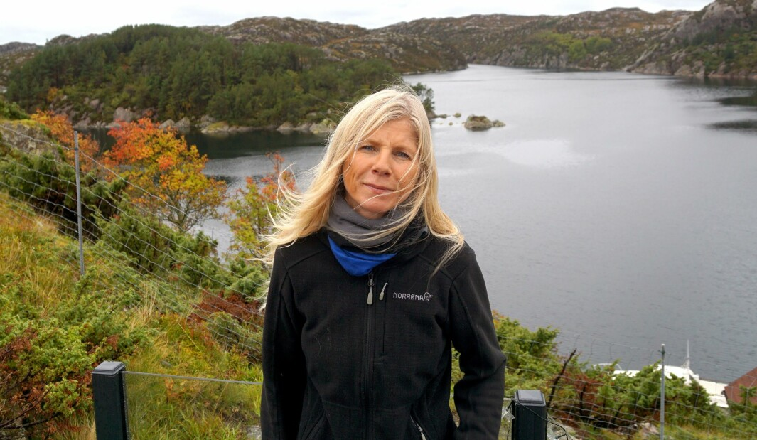 – Midt opp i denne galskapen der vi lurer på om vi overlever økonomisk, vil Guri at vi skal gjøre en vurdering av norskkunskapene til alle barn i barnehagene, skriver Lise Lauvik.