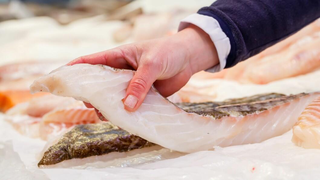 Berg Seafood AS og Svolvær Seafood AS har gått sammen om å donere vekk fiskefilet til over 50.000 kroner til barnehager i Lofoten