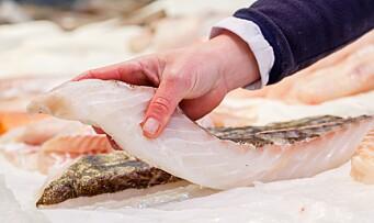 Gir bort ferskfisk verdt tusenvis av kroner til barnehagene