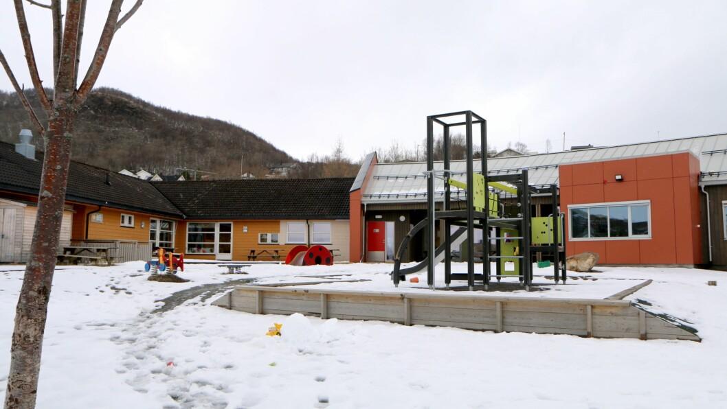 Lillevollen barnehage er en privat stiftelse som driver barnehage for rundt 65 barn i Bodø. Barnehagen ligger i bydelen Rønvik, i et fredelig område i nær tilknytning til skog og mark. Barna er fordelt på to småbarnsavdelinger og to 3-5-årsavdelinger. Hver avdeling har to utdannede barnehagelærere.