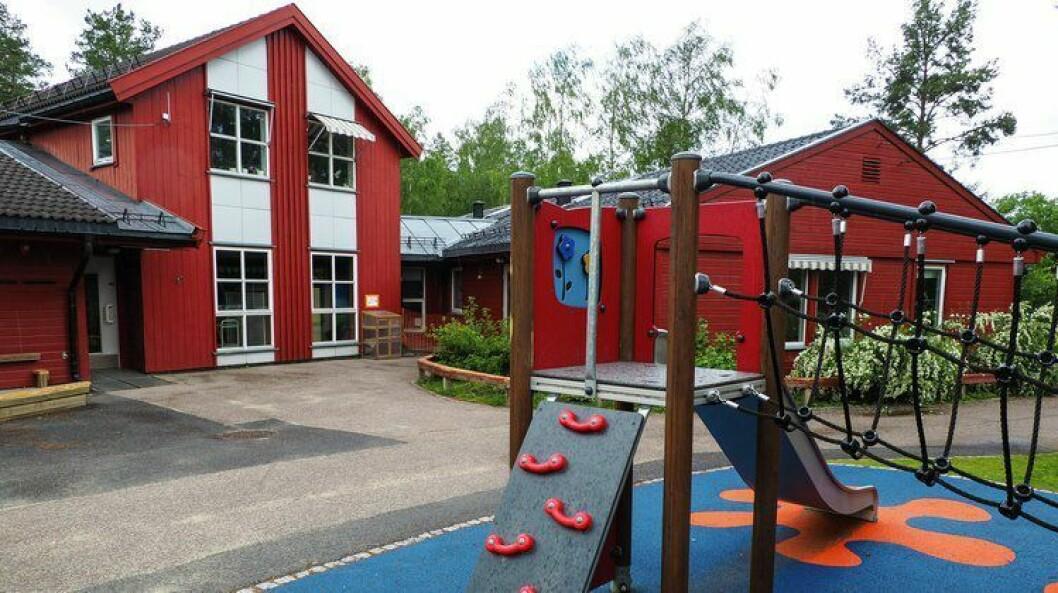 Flere av barnehagens klatrestativ skal ha blitt utsatt for spytt.