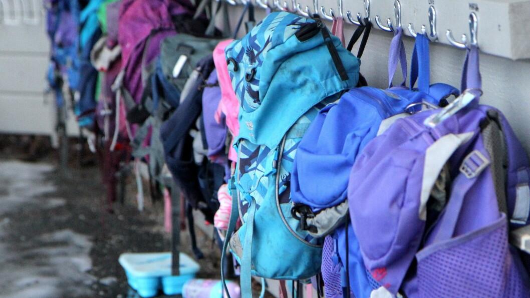 BDO har skrevet en rapport som har sett nærmere på organiseringen av barnehagene på oppdrag fra KD.