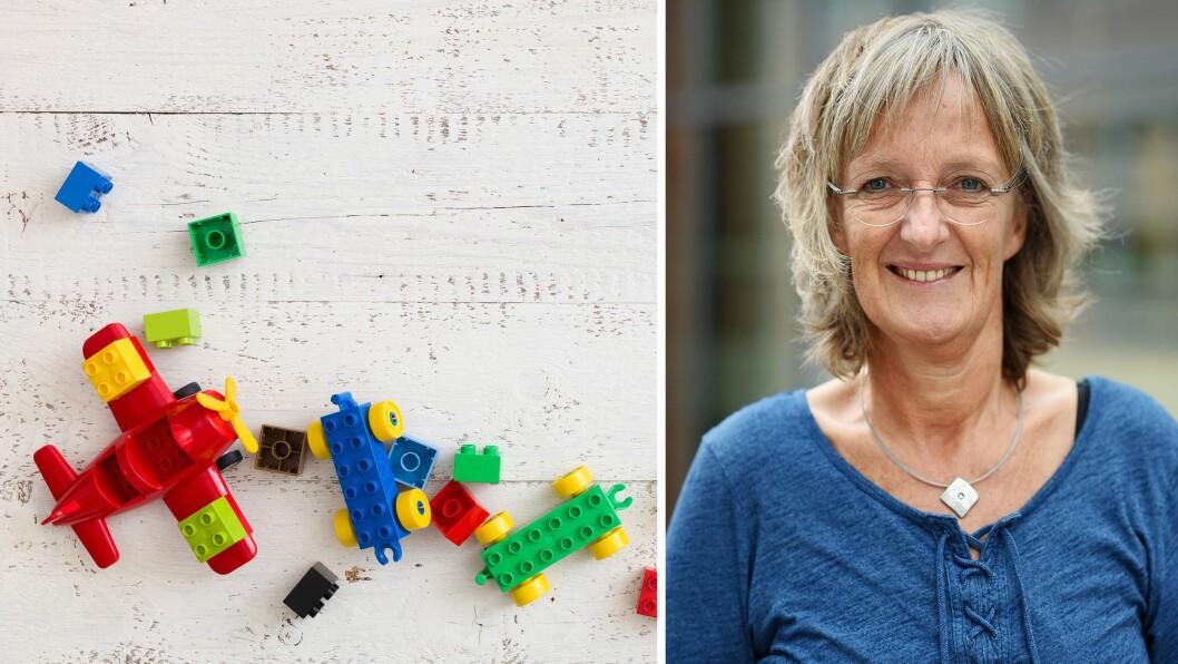 Ingrid Lund er professor i spesialpedagogikk ved Pedagogisk utviklingssenter (PULS) ved Universitetet i Agder, og har i en årrekke forsket på mobbing i barnehage og skole.