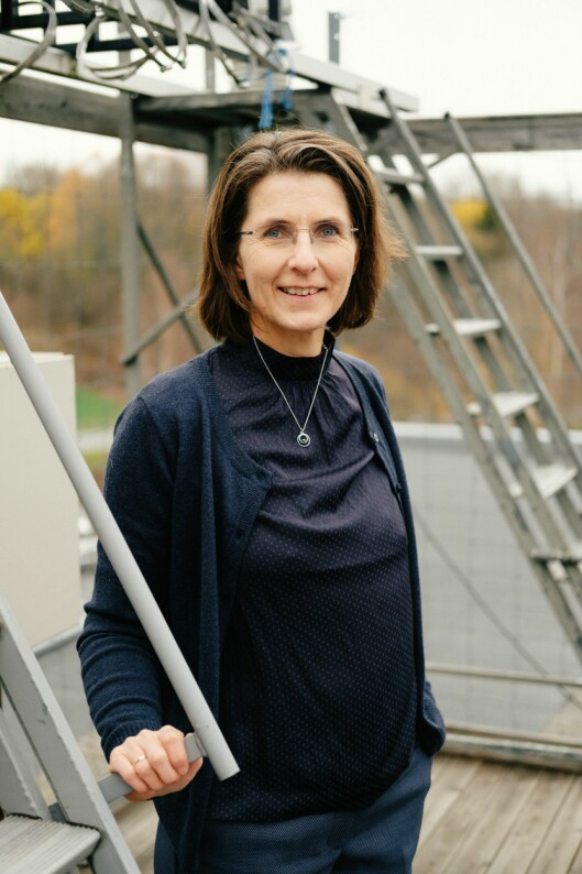 Lill Tove Nilsen, fagdirektør optisk stråling ved Direktoratet for strålevern og atomsikkerhet.