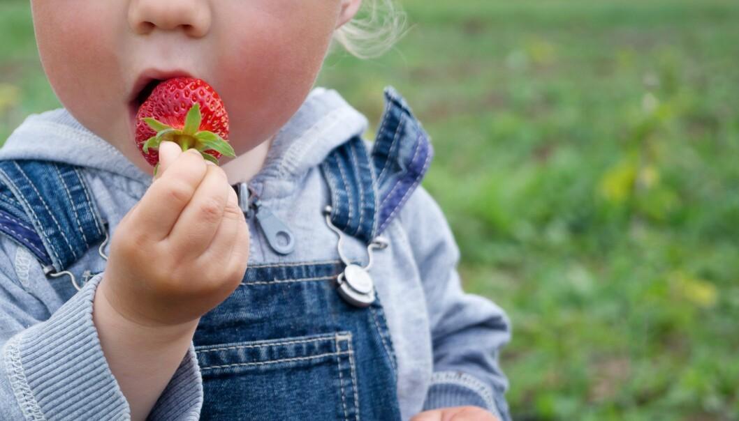 Kan barnehager arrangere sommeravslutninger også i år? Ja, sier Folkehelseinstituttet.