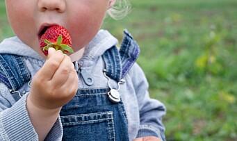 Her er FHIs råd om sommeravslutninger i barnehager