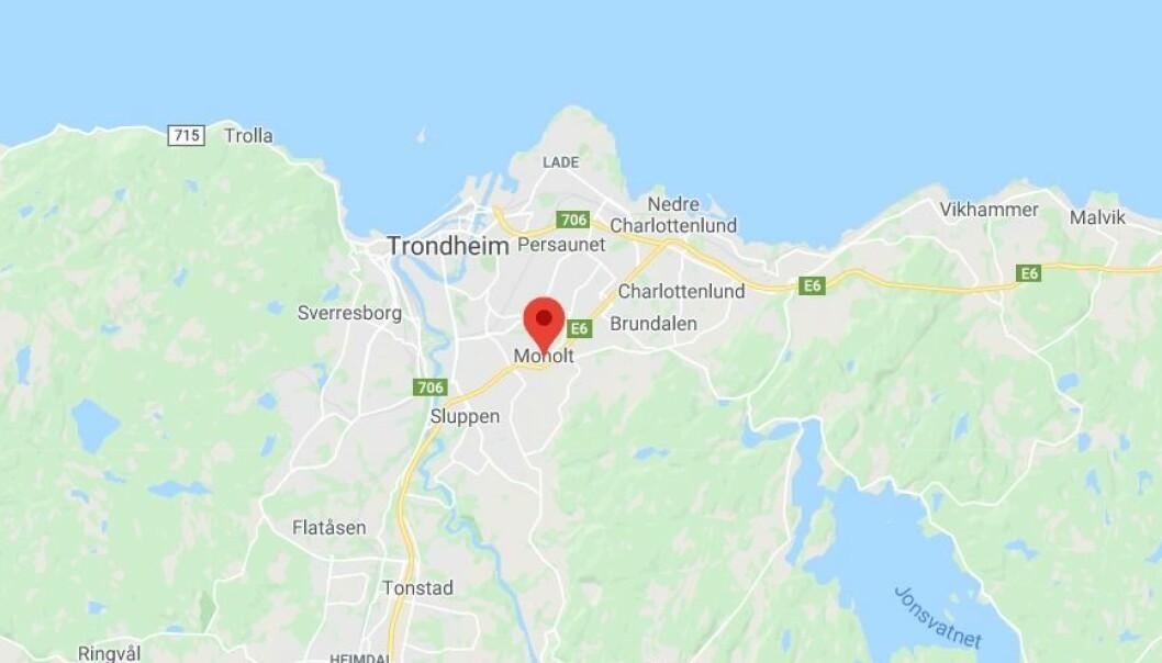 Det er foreløpig uklart når barnehagen eller deler av barnehagen kan åpne igjen, forteller Gustav Øverli, velferdsdirektør i Studentsamskipnaden i Trondheim.