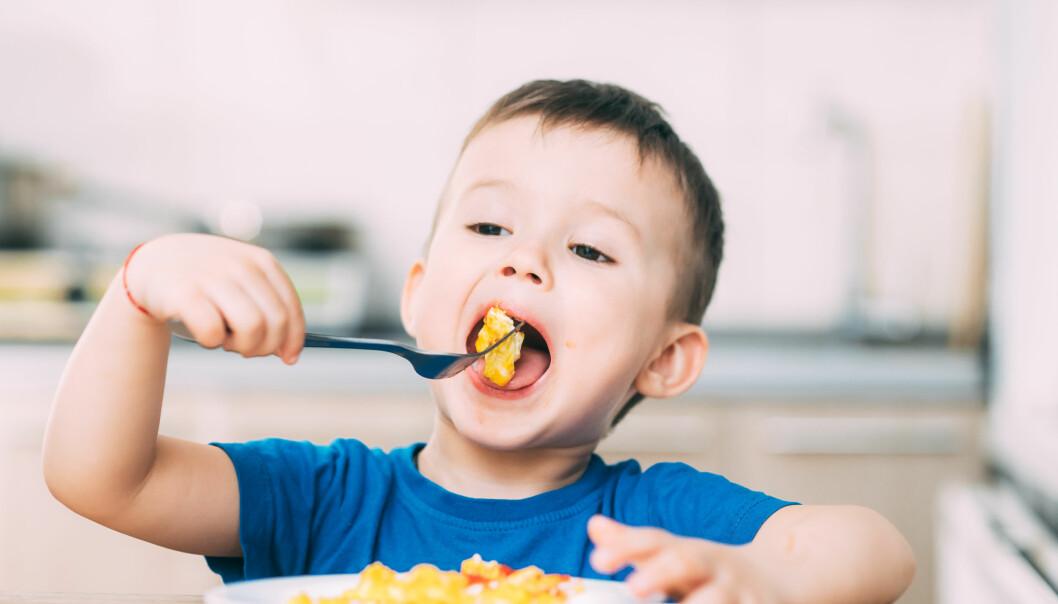 """<span class="""" italic"""" data-lab-italic_desktop=""""italic"""">– Jeg mener at det er rimelig å skille mellom mat som en pedagogisk aktivitet, og mat som et tilbud til barn og foreldre utover det pedagogiske, skriver artikkelforfatteren.</span>"""