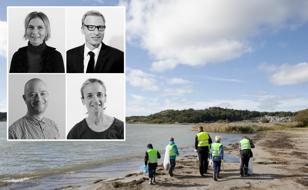 De har forsket på barns kunnskap om bærekraft og miljø. Øverst fra venstre Kathrine Bjørgen, Børge Moe, Per-Arvid Wold og Claudia Melis ved DMMH.
