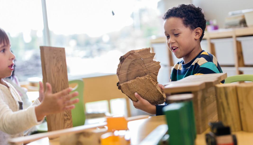 «5- og 6-åringer er selvfølgelig forskjellige – i både interesser, modning og mestring. Men det som i stor grad bringer dem sammen er jo nettopp leken,» skriver artikkelforfatterne.
