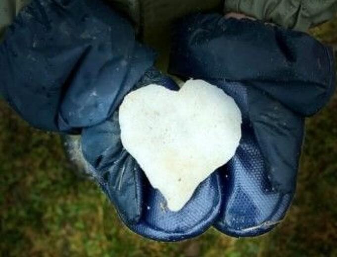 """<span class="""" italic"""" data-lab-italic_desktop=""""italic"""">Barnehager over hele landet har delt hjerter, for å gi omsorg til de barnehagene som har blitt rammet av korona.</span>"""