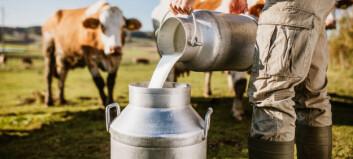 Fikk melk rett fra kua på gårdsbesøk - barna ble syke