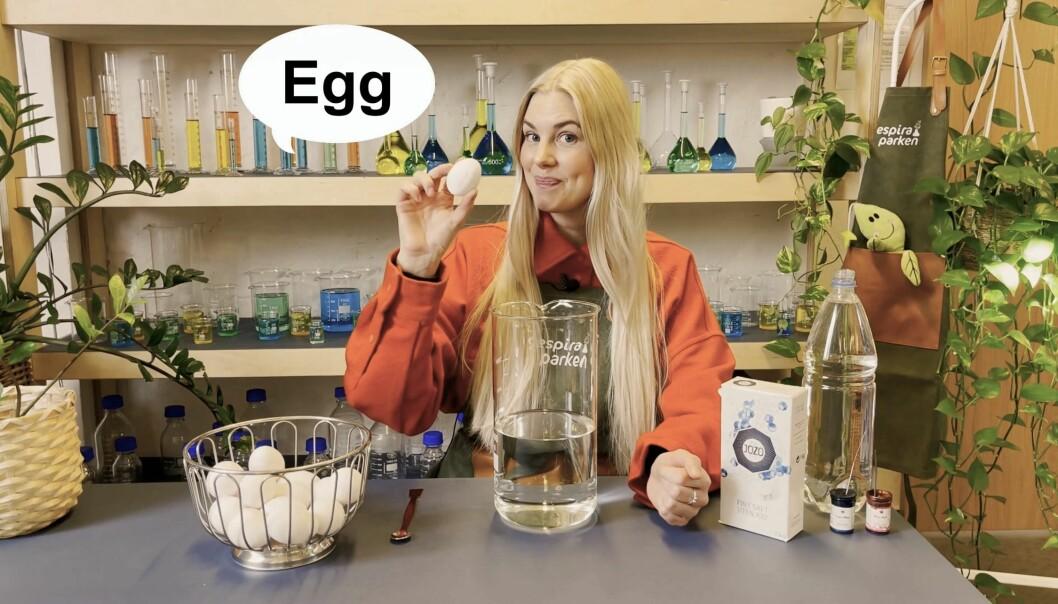 """<span class="""" italic"""" data-lab-italic_desktop=""""italic"""">Egg er en naturlig ingrediens i forsøkene Oda Bjerknes skal gjøre i laboratoriet denne påsken.</span>"""