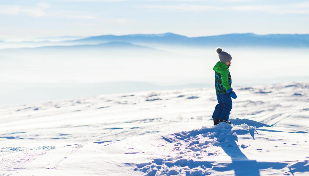 Nå ber jeg dere kjære politikere, lytt til de erfarne arbeidstakerne som jobber rundt omkring i barnehagene i Norge, slik man lytter til erfarne fjellfolk når man legger ut på lang fjelltur. Vi nærmer oss toppen av fjellet, men energilagrene er tomme og vi har ikke mer i sekken, skriver Brit Kristin Karlsaunet i dette innlegget.