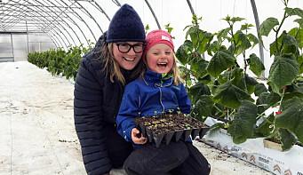 Deler ut grønnsaksplanter til alle barnehagene i fylket