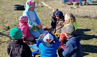 Fremtidens barnehage: Systemnivå på villspor