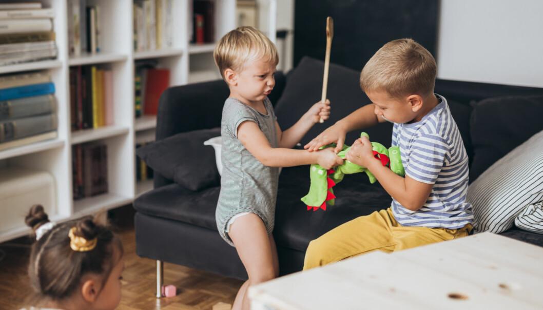 – Jeg er overbevist om at lekeslåssing er en viktig medfaktor i utvikling av empatiforståelse hos gutter.