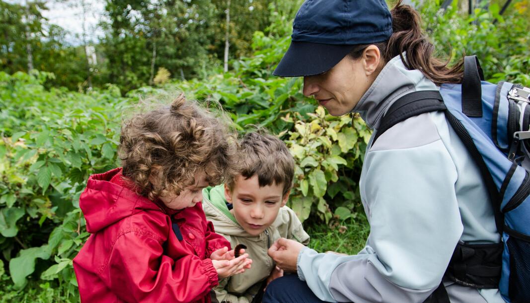 – Noe av det man er veldig god på i barnehagen er nettopp å «gjøre språk». Ord- og begrepslæring skjer først og fremst ved å oppleve og ta på ting, sier Carola Kleemann ved UiT.